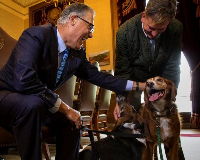 Washington Week for the Animals